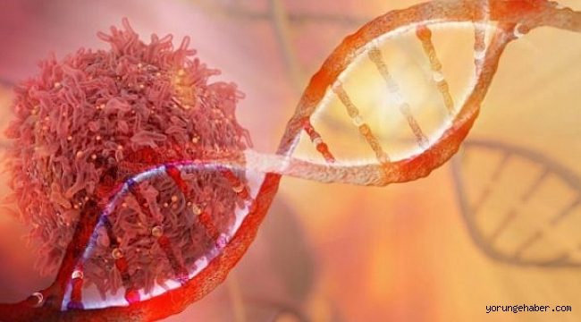 Kanser tedavisinde yeni buluş