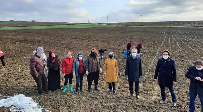 Kadın girişimciler bakanlık desteği ile Silivri'de ekime başladı